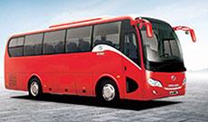 autobus-lizing